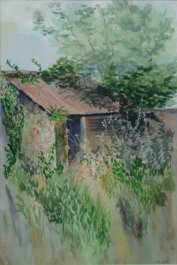 Shed by Jane Ford, Watercolour