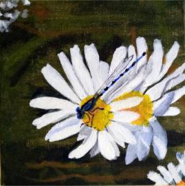 Dragonfly on Daisy   acrylic on box canvas