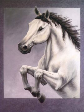 """ Grey Horse""  in acrylic"