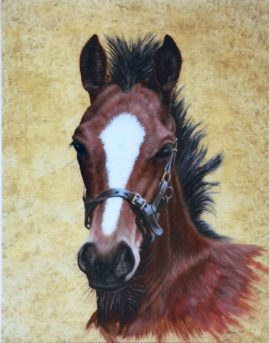 """ Yearling"" in acrylic"