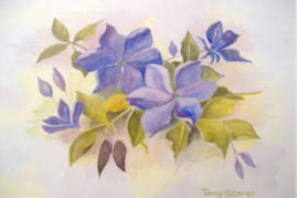 "13""x 10"" watercolour, titled: ""Clematis"""