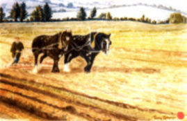 "15""x11"" watercolour, titled: ""Ploughing"""